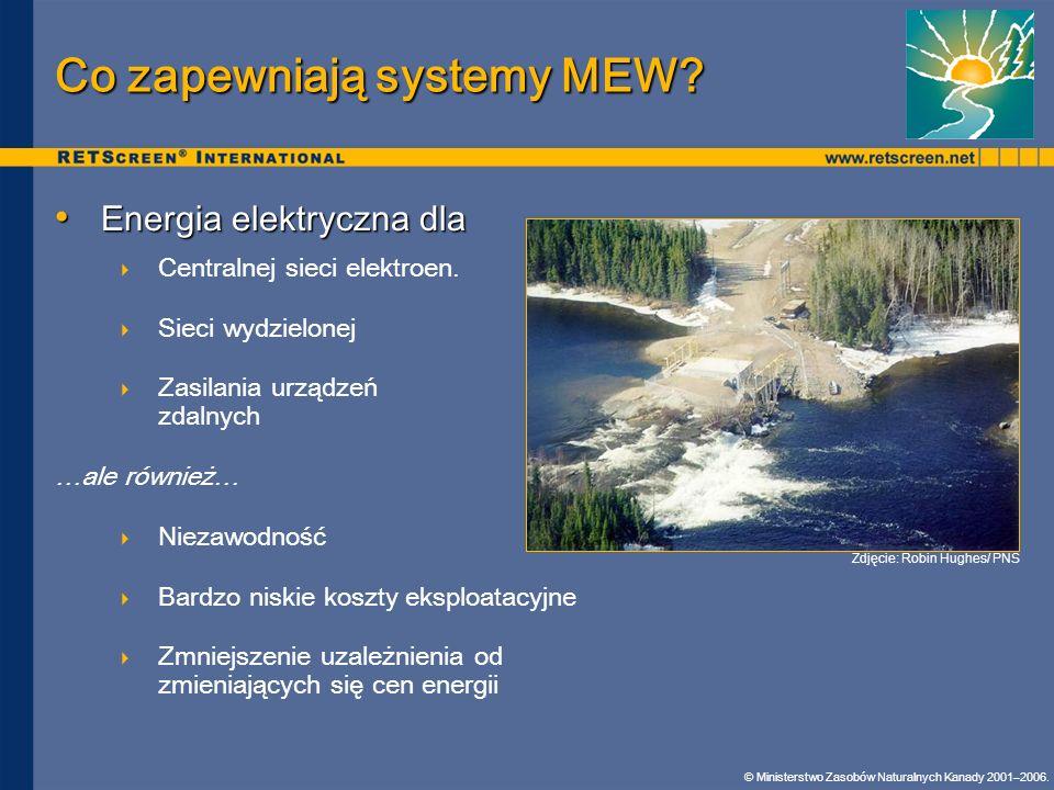 Co zapewniają systemy MEW