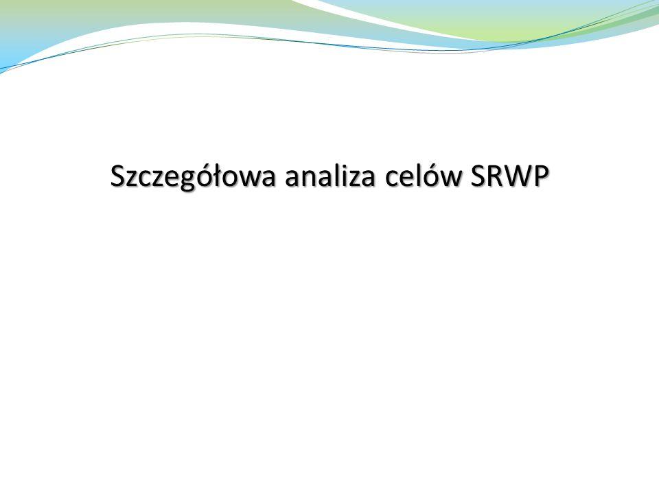 Szczegółowa analiza celów SRWP