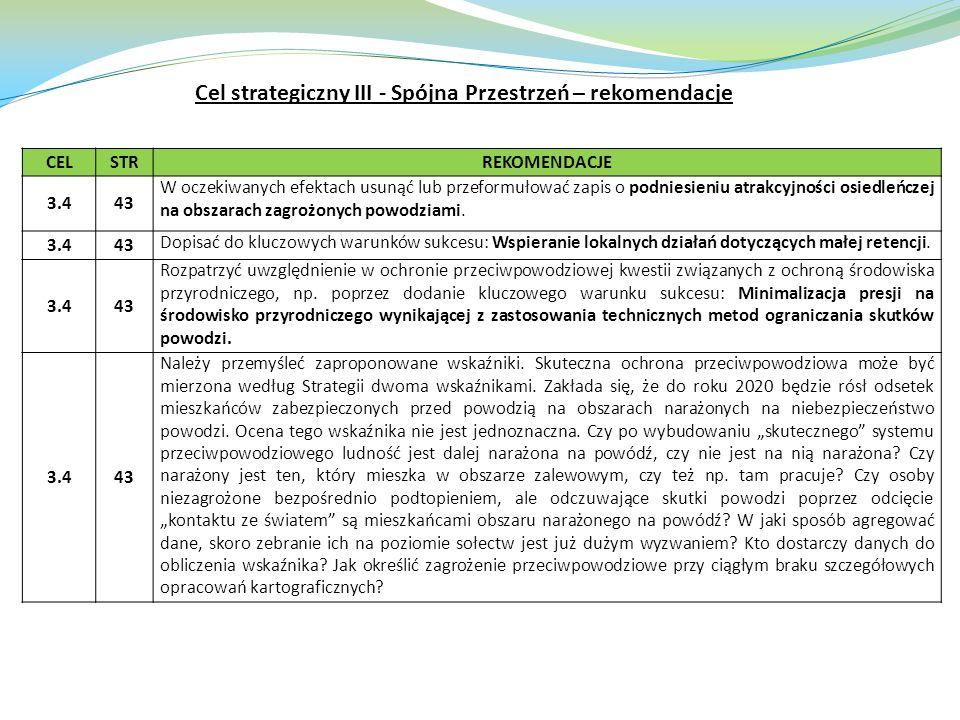 Cel strategiczny III - Spójna Przestrzeń – rekomendacje