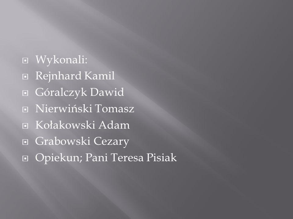 Wykonali: Rejnhard Kamil. Góralczyk Dawid. Nierwiński Tomasz. Kołakowski Adam. Grabowski Cezary.