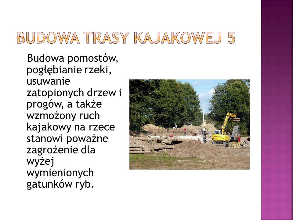 Budowa trasy kajakowej 5