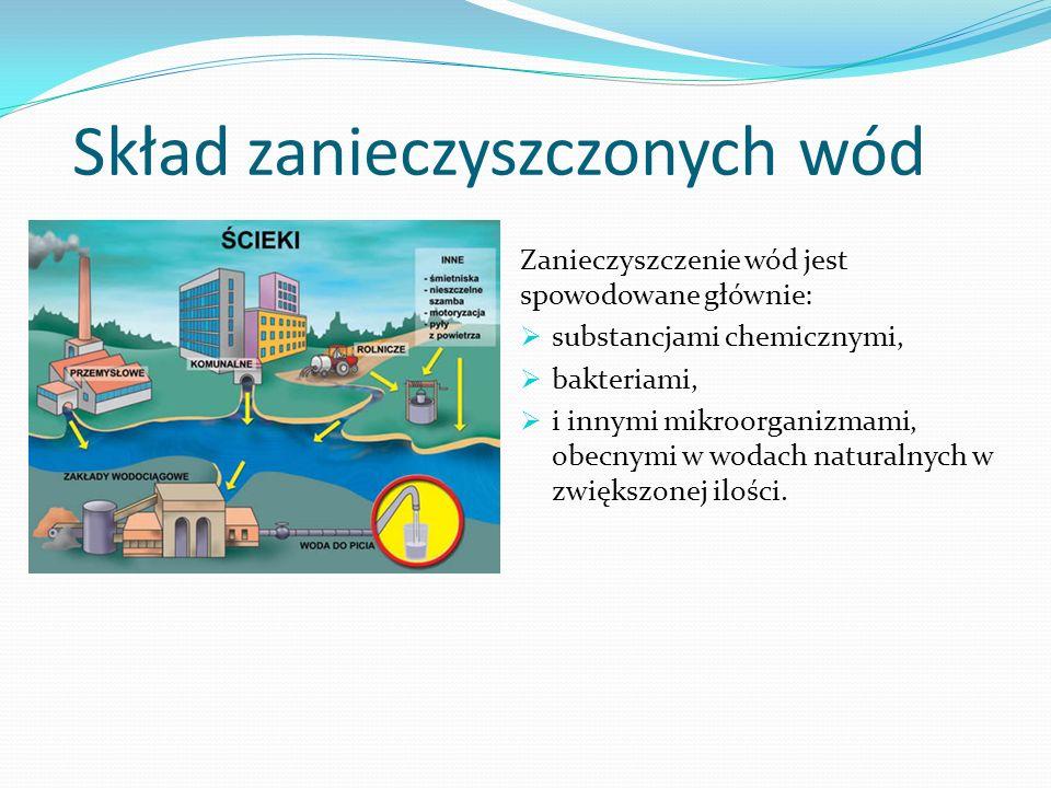 Skład zanieczyszczonych wód
