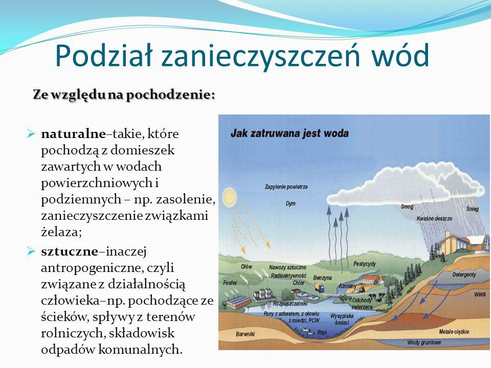 Podział zanieczyszczeń wód