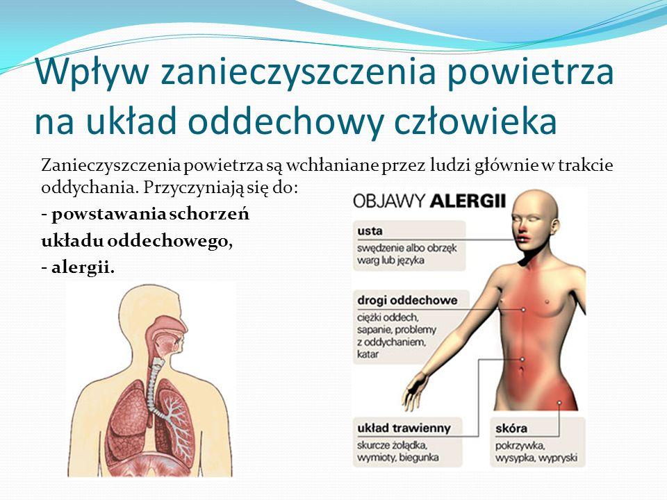 Wpływ zanieczyszczenia powietrza na układ oddechowy człowieka