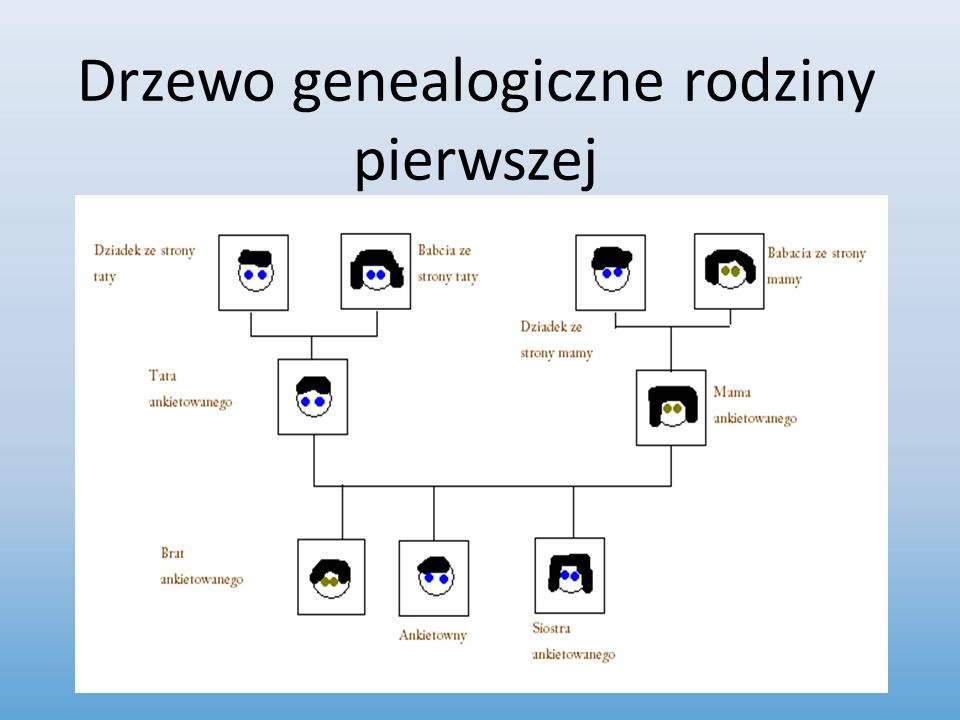 Drzewo genealogiczne rodziny pierwszej