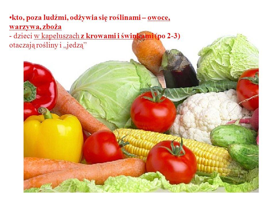 kto, poza ludźmi, odżywia się roślinami – owoce, warzywa, zboża