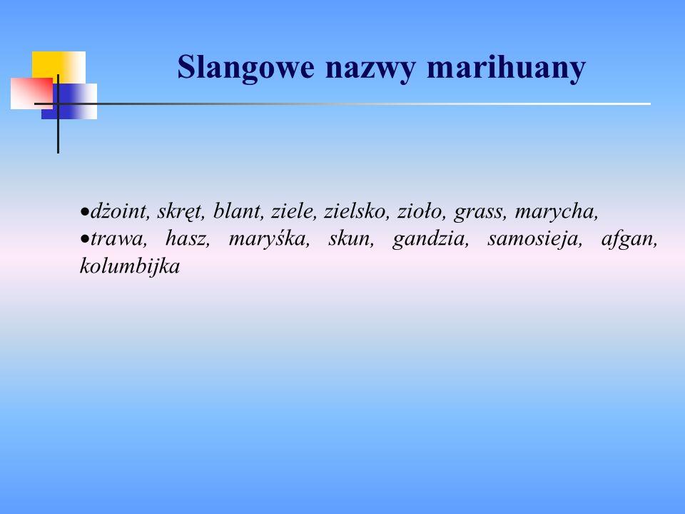 Slangowe nazwy marihuany