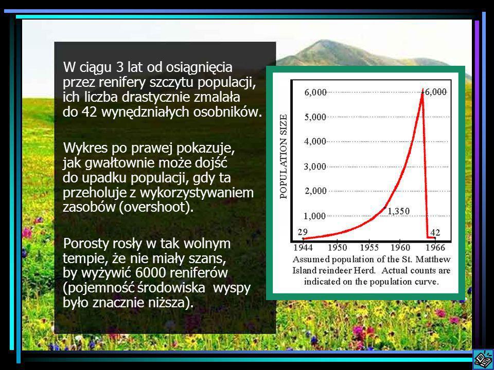 W ciągu 3 lat od osiągnięcia przez renifery szczytu populacji, ich liczba drastycznie zmalała do 42 wynędzniałych osobników.