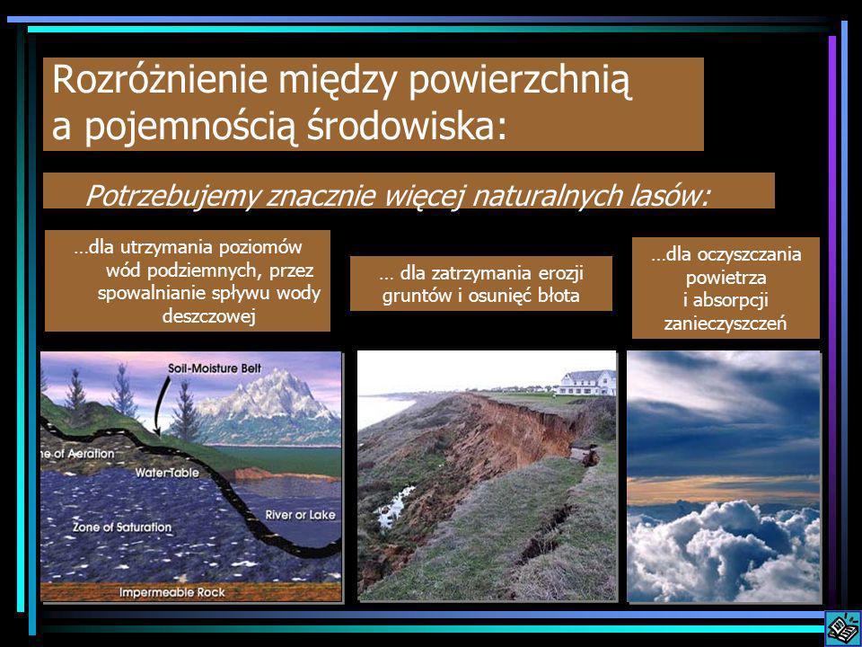 Rozróżnienie między powierzchnią a pojemnością środowiska: