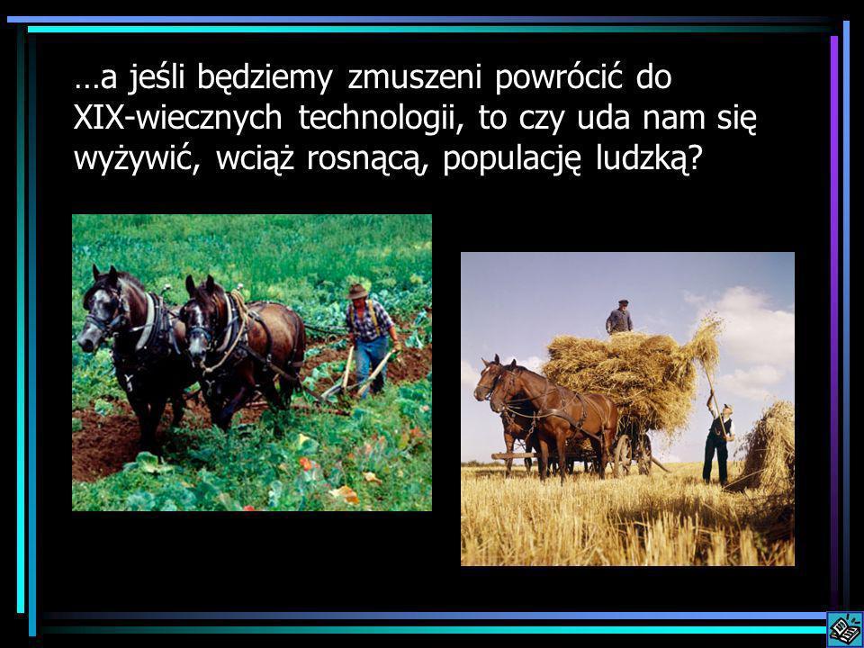 …a jeśli będziemy zmuszeni powrócić do XIX-wiecznych technologii, to czy uda nam się wyżywić, wciąż rosnącą, populację ludzką