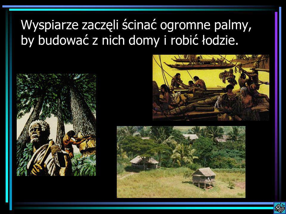 Wyspiarze zaczęli ścinać ogromne palmy, by budować z nich domy i robić łodzie.