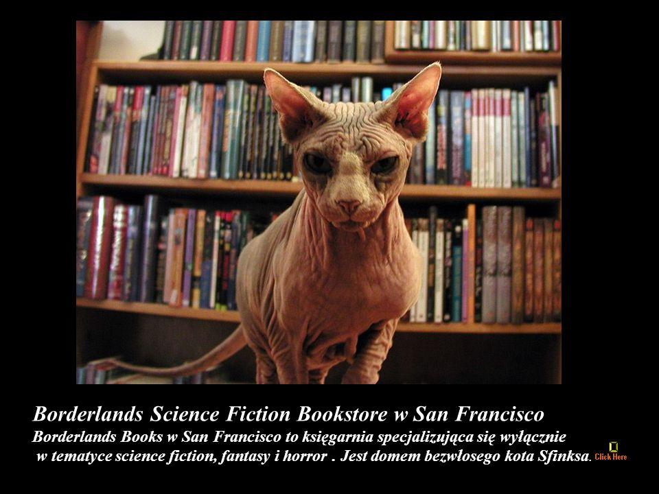 Borderlands Science Fiction Bookstore w San Francisco