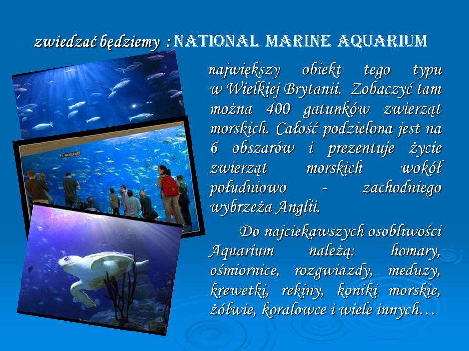 zwiedzać będziemy : National Marine Aquarium