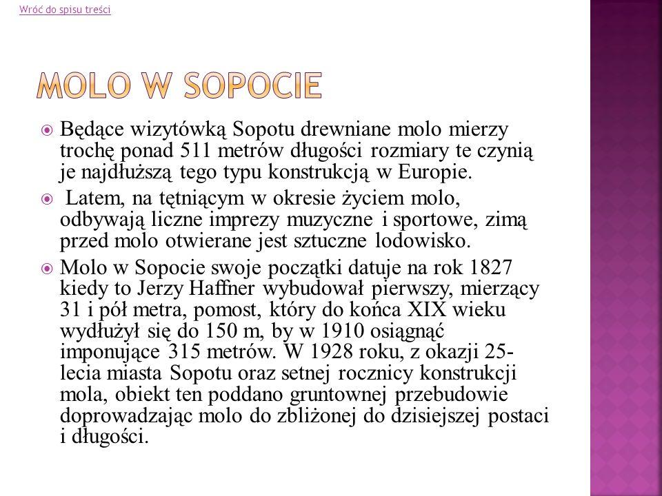 Wróć do spisu treści Molo w Sopocie.