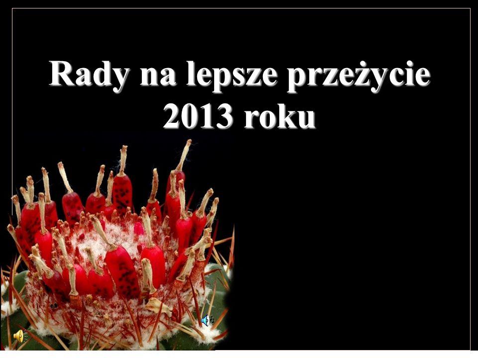 Rady na lepsze przeżycie 2013 roku