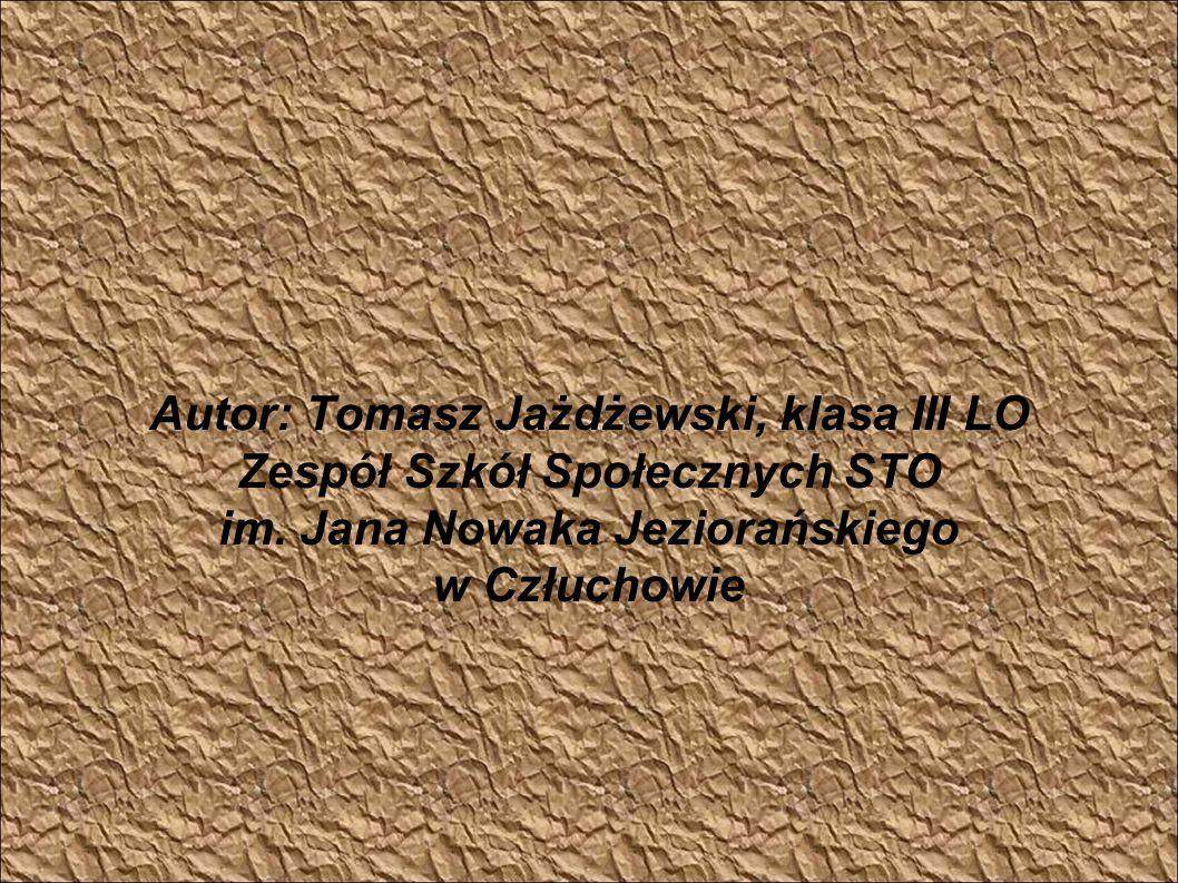 Autor: Tomasz Jażdżewski, klasa III LO Zespół Szkół Społecznych STO