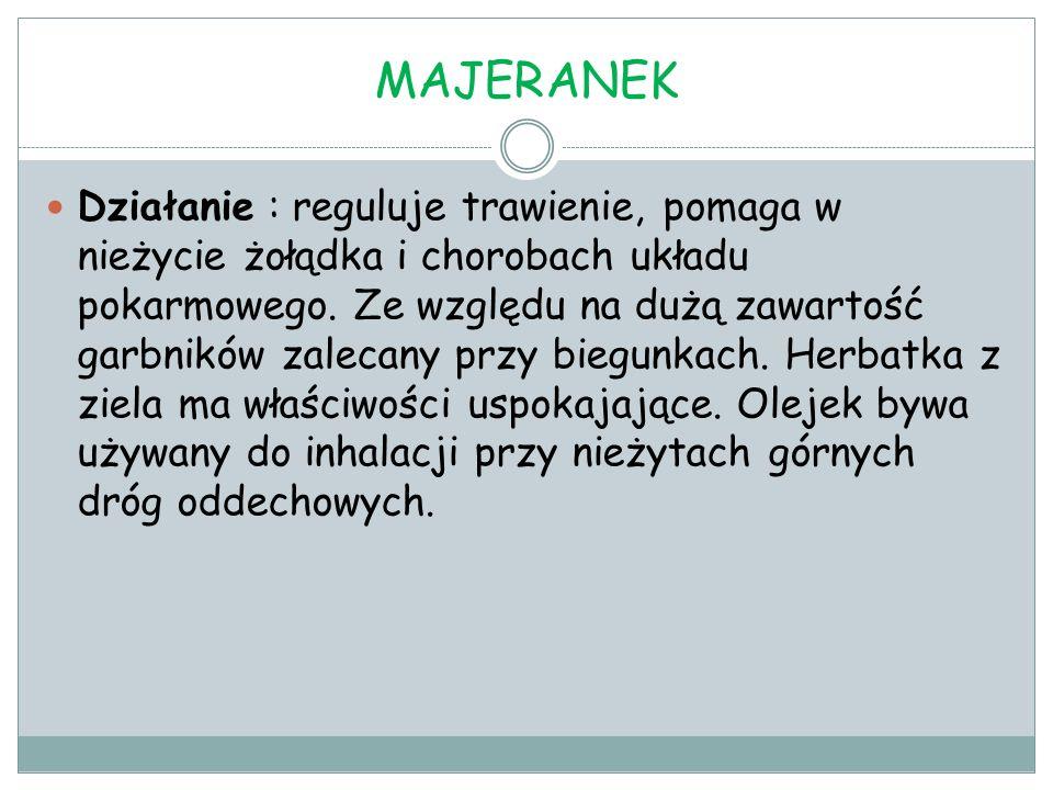 MAJERANEK