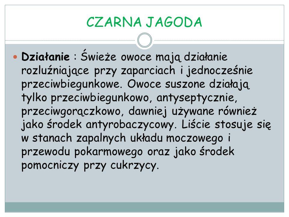CZARNA JAGODA