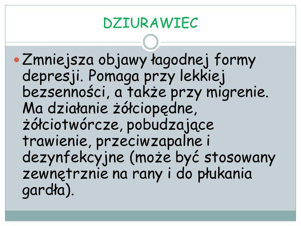 DZIURAWIEC