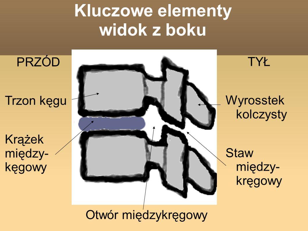 Kluczowe elementy widok z boku