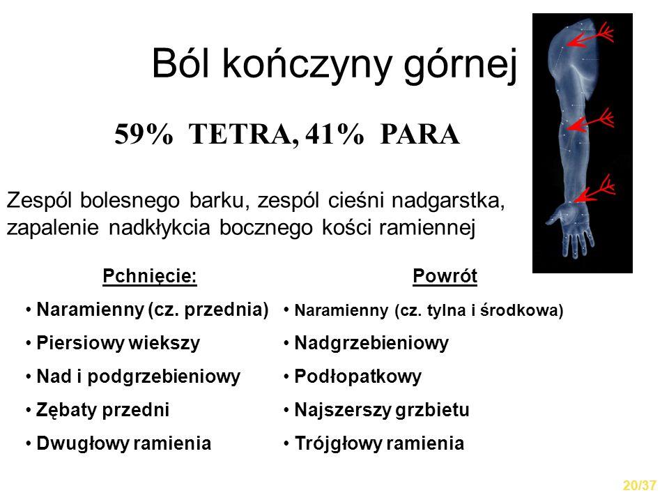 Ból kończyny górnej 59% TETRA, 41% PARA