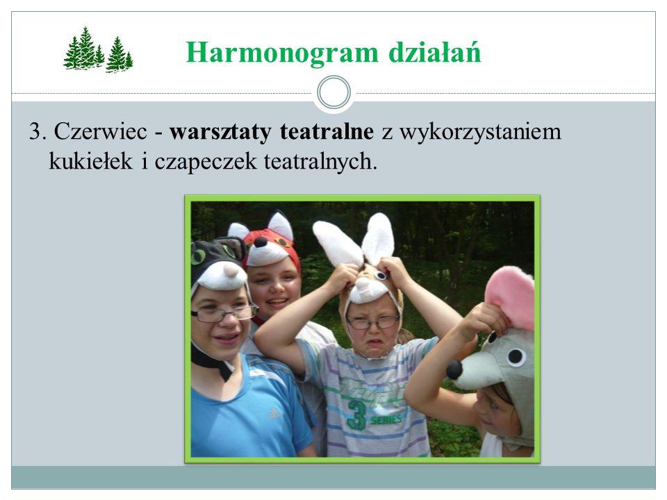 Harmonogram działań 3.