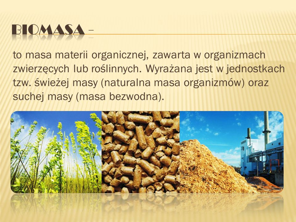 Biomasa -