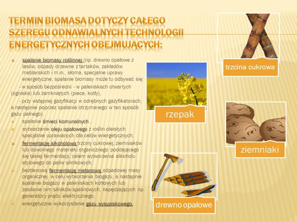 Termin biomasa dotyczy całego szeregu odnawialnych technologii energetycznych obejmujących: