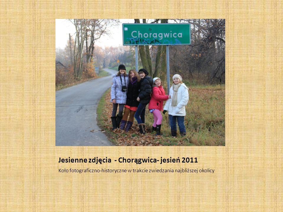 Jesienne zdjęcia - Chorągwica- jesień 2011