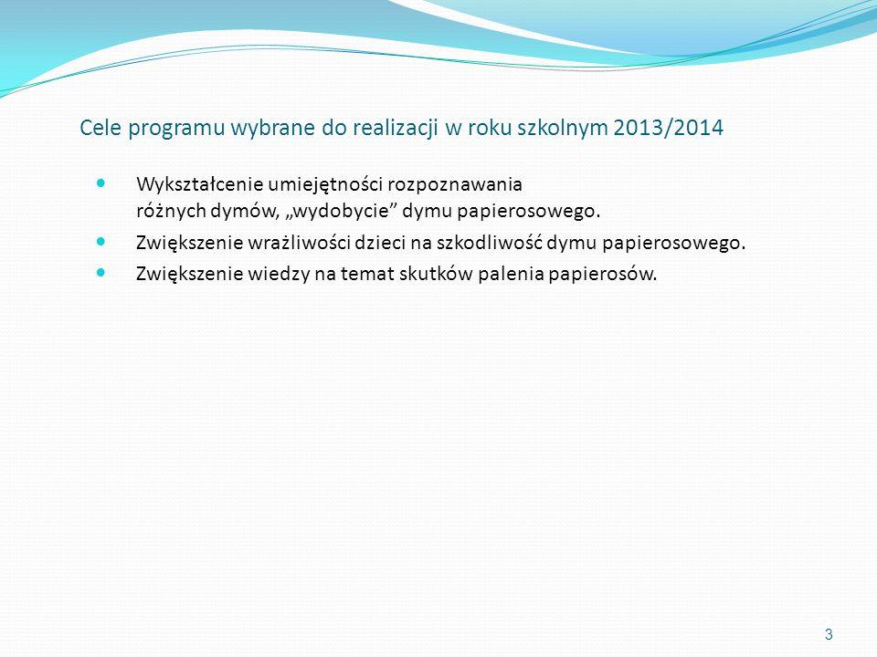 Cele programu wybrane do realizacji w roku szkolnym 2013/2014