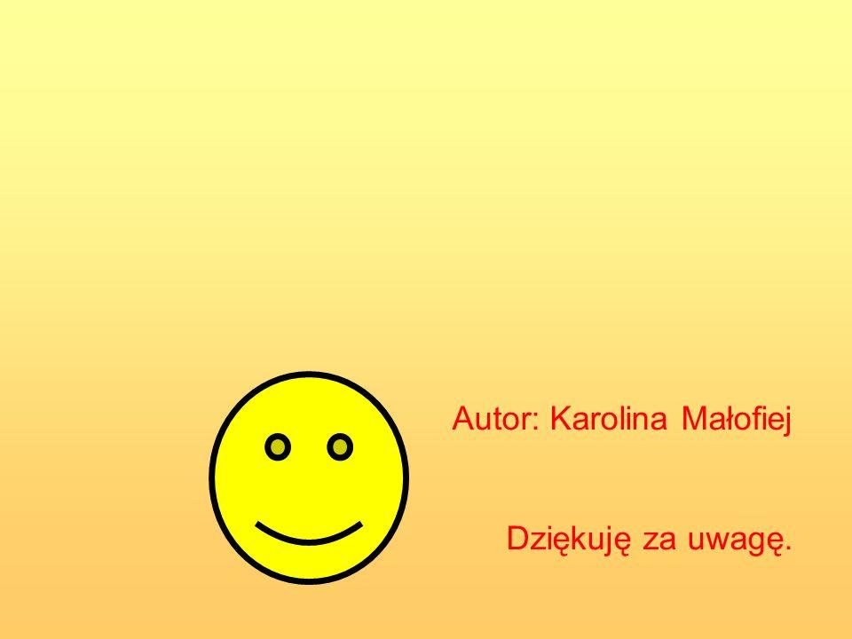 Autor: Karolina Małofiej