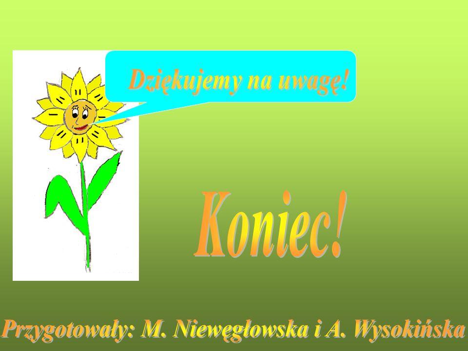 Przygotowały: M. Niewęgłowska i A. Wysokińska