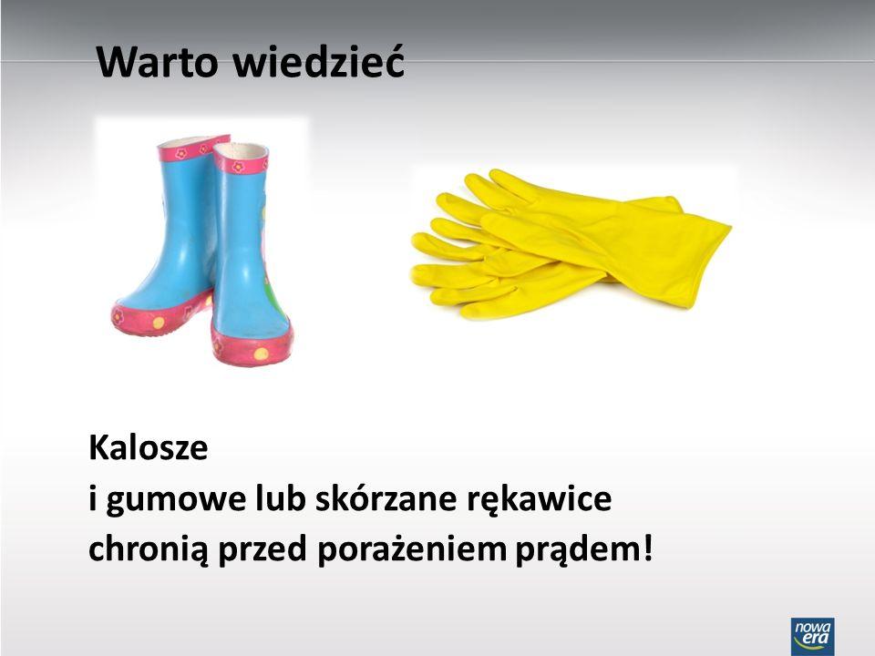 Warto wiedzieć Kalosze i gumowe lub skórzane rękawice