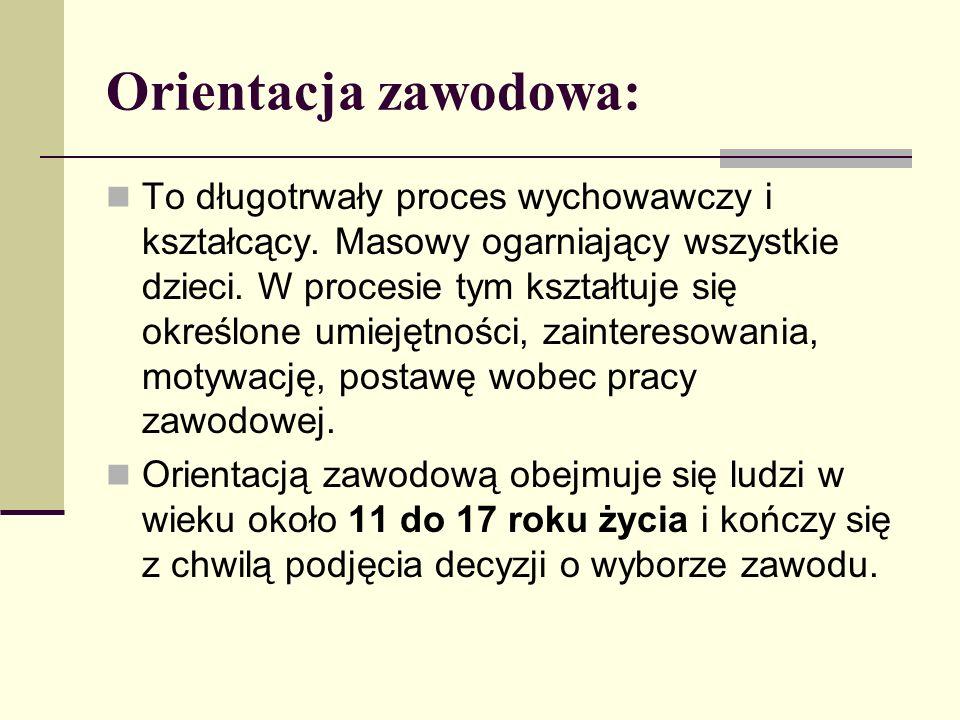 Orientacja zawodowa: