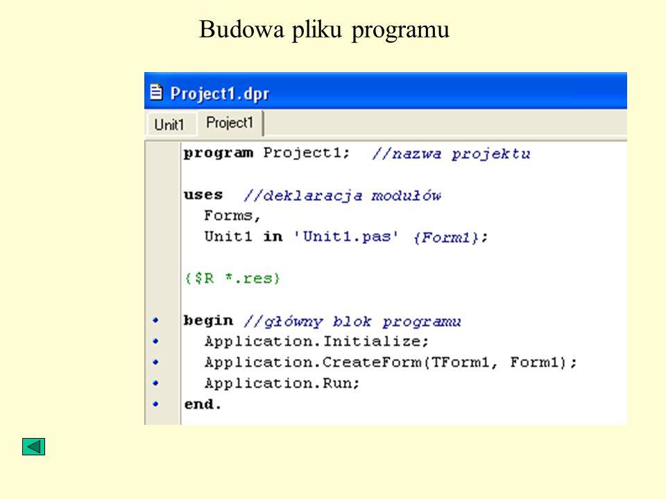 Budowa pliku programu