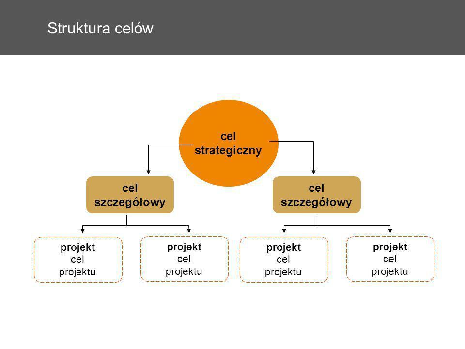 Struktura celów cel strategiczny projekt cel projektu cel szczegółowy