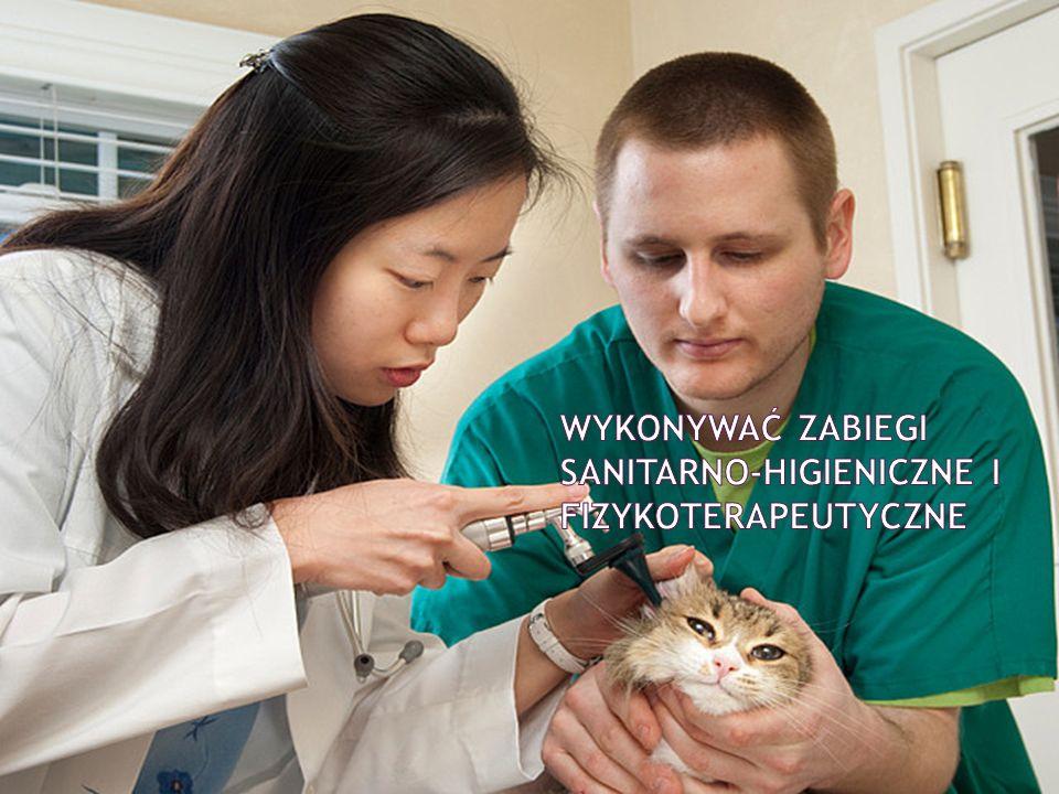 wykonywać zabiegi sanitarno-higieniczne i fizykoterapeutyczne