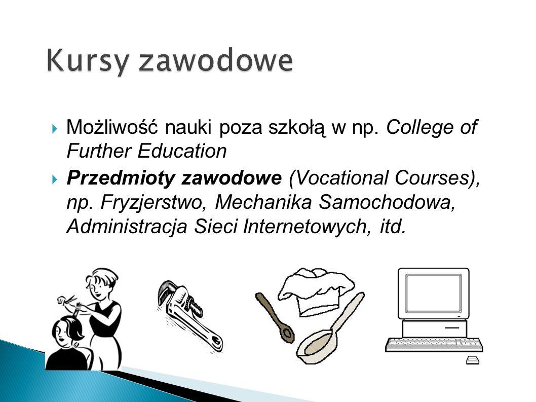 Kursy zawodowe Możliwość nauki poza szkołą w np. College of Further Education.