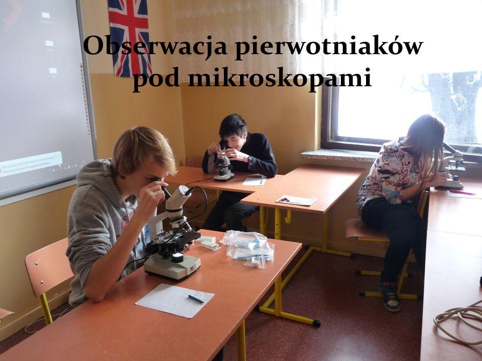 Obserwacja pierwotniaków pod mikroskopami