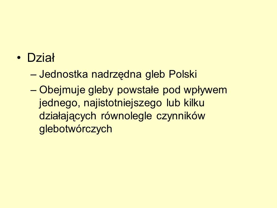 Dział Jednostka nadrzędna gleb Polski