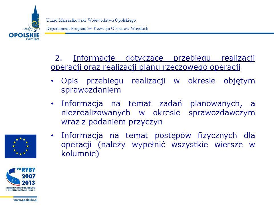 Opis przebiegu realizacji w okresie objętym sprawozdaniem