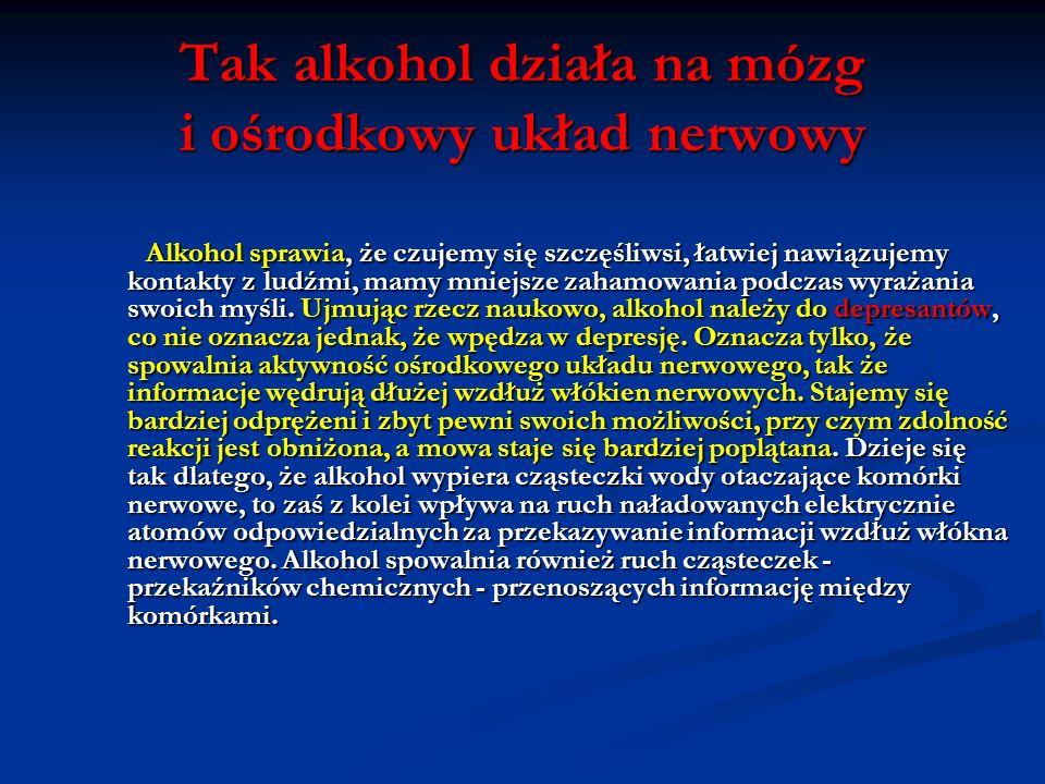 Tak alkohol działa na mózg i ośrodkowy układ nerwowy