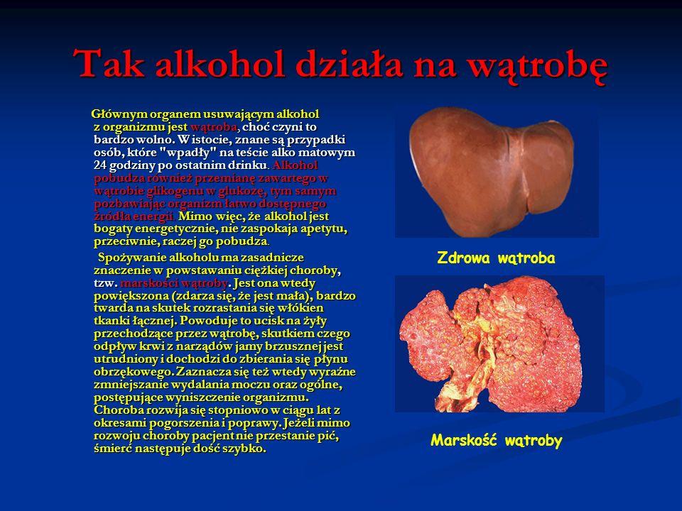 Tak alkohol działa na wątrobę