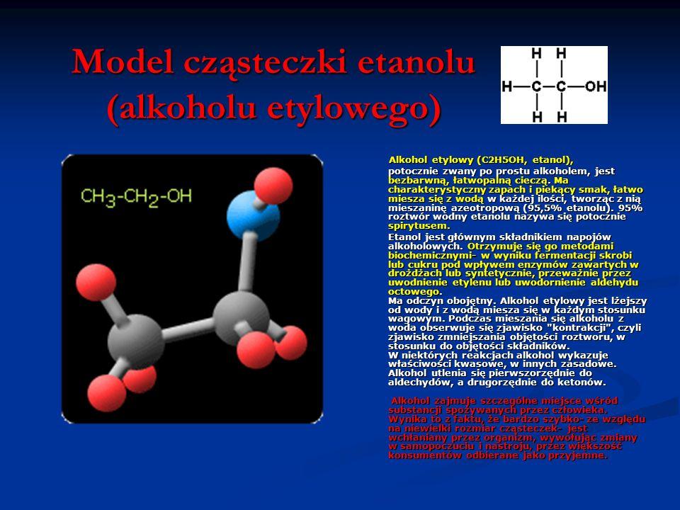 Model cząsteczki etanolu (alkoholu etylowego)