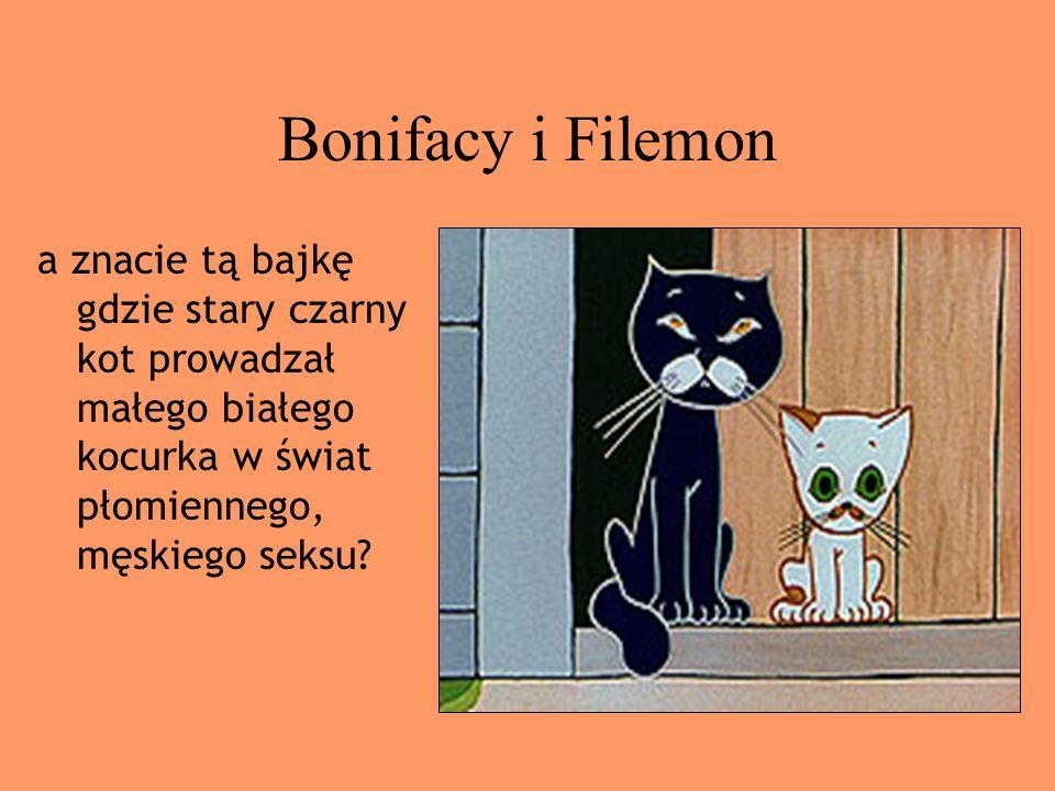Bonifacy i Filemon a znacie tą bajkę gdzie stary czarny kot prowadzał małego białego kocurka w świat płomiennego, męskiego seksu