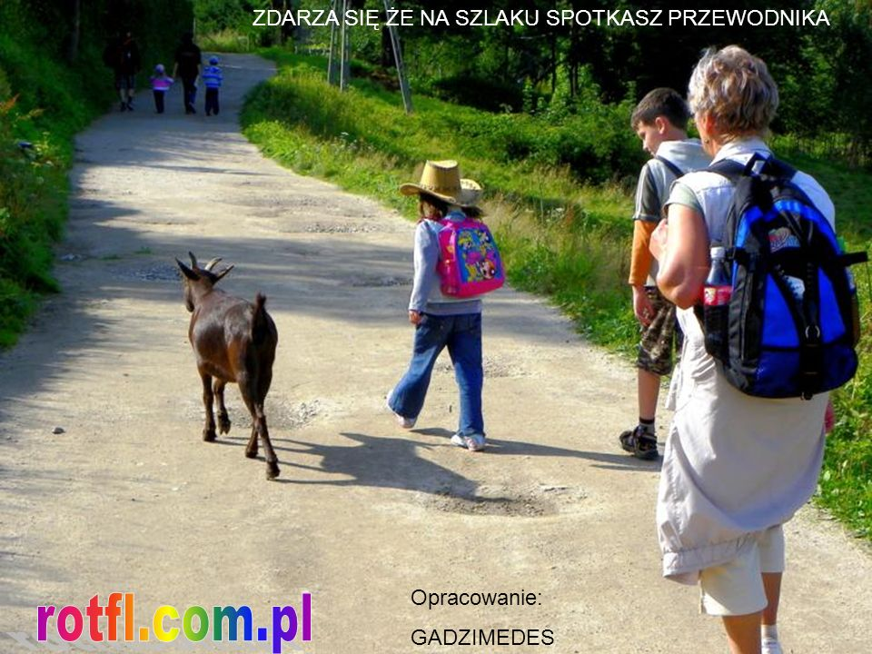 rotfl.com.pl ZDARZA SIĘ ŻE NA SZLAKU SPOTKASZ PRZEWODNIKA Opracowanie: