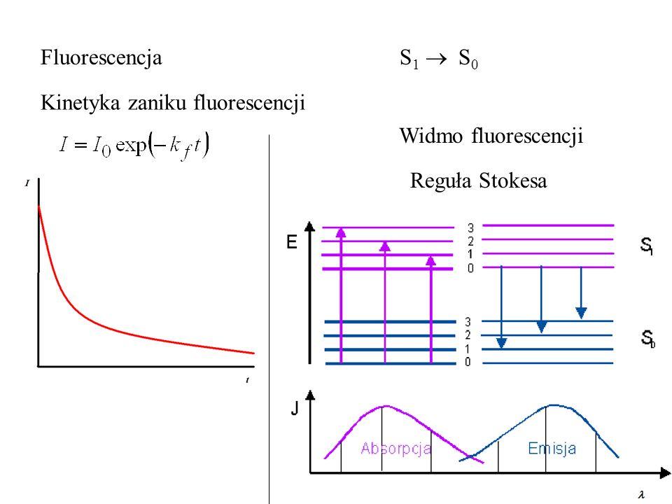 Fluorescencja S1  S0 Kinetyka zaniku fluorescencji. Widmo fluorescencji.