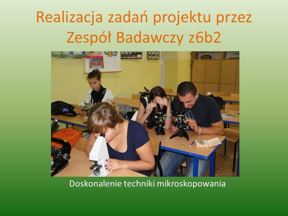 Realizacja zadań projektu przez Zespół Badawczy z6b2