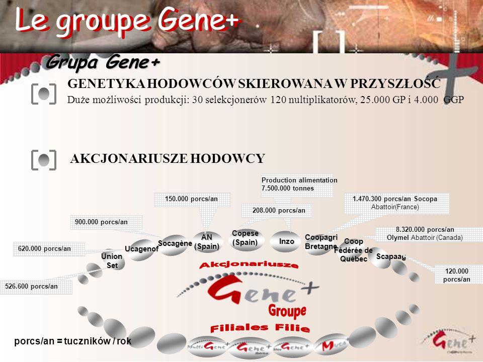 Le groupe Gene+ Le groupe Gene+ Grupa Gene+ Akcjonariusze Groupe