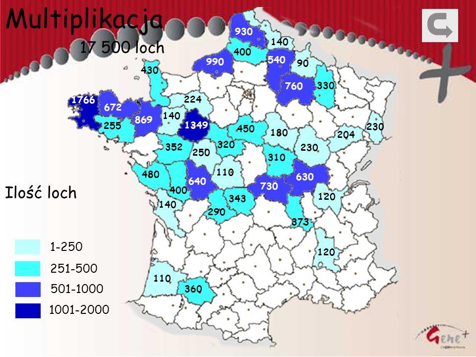 Multiplikacja 17 500 loch Ilość loch 1-250 251-500 501-1000 1001-2000